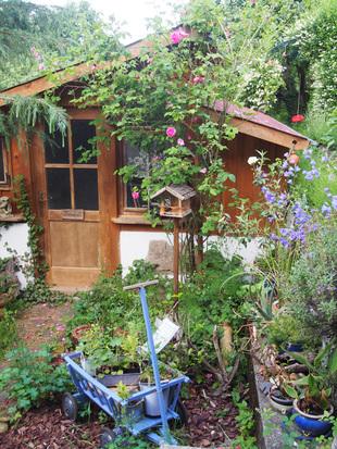 Trockenhaus für unsre Kräuter
