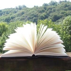 Bücher - Katalog