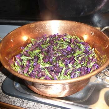 Blüten und Kräuter-Sirup