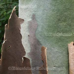 """Eukalyptus """"Citrio-Jaune"""" (5 ml)"""