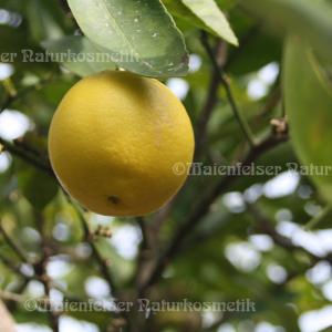 Limone gepr. Indien (10 ml)