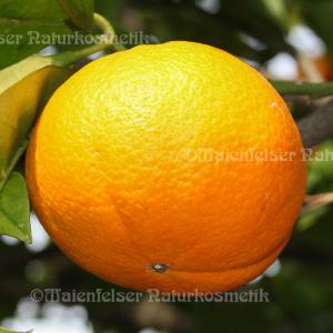 Orange süß terpenarm (10 ml)