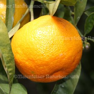 Orange süß stark (10 ml)