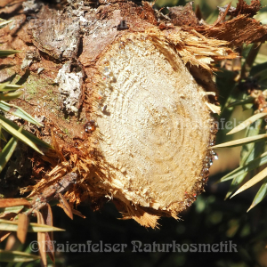 Wacholderholz (10 ml)