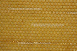 Bienenwachs abs. (2 ml)