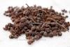 Tomer seed (30 g)