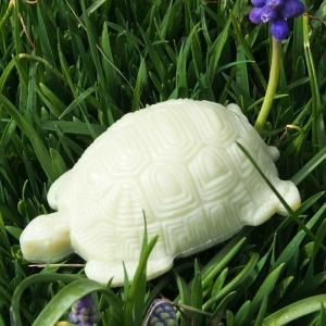 Lemongras-Seife Schildkröte