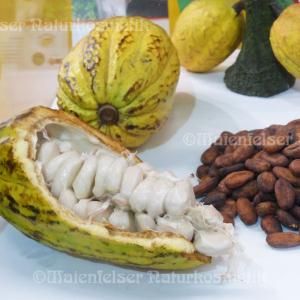 Kakao-Extrakt BIO (5 gr)