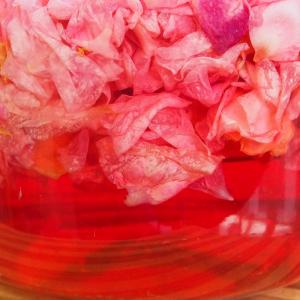 Rosensirup (60 ml)